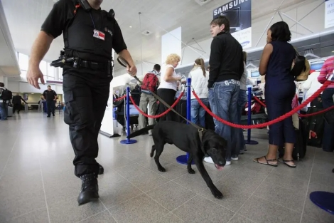 Sniffer Dogs Immigration